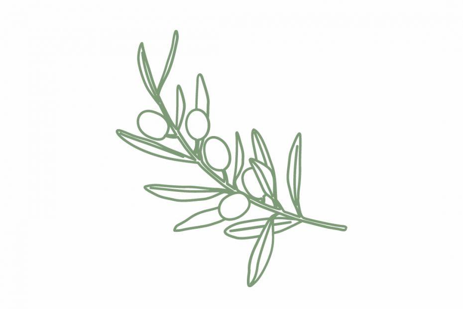 HUILE D'OLIVE : Quels sont les bienfaits de l'huile d'olive ?