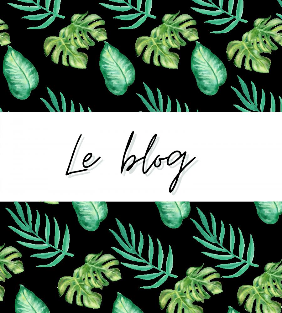 Du côté du Blog (2)